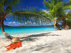 Caribbean and Bermuda Holland America Cruises
